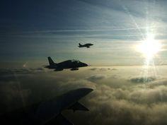 Fighter Jets, Aircraft, Army, Modern, Gi Joe, Aviation, Trendy Tree, Military, Planes