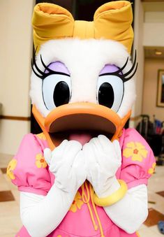 Daisy Duck, Ducks, Donald Duck, Costumes, Park, Friends, Disney Characters, Amigos, Dress Up Clothes