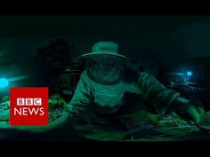 Resistance of Honey Master (360 video) - BBC News