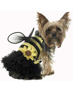 Daisy Bee Pet Costume