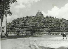 Borobudur, 1951