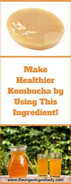 Make Healthier Kombucha Using This Ingredient! Make healthier Kombucha with this ingredient! Kombucha Flavors, Kombucha Scoby, Probiotic Drinks, Green Tea Kombucha, Kombucha Fermentation, Kombucha Brewing, Kombucha Starter, Healthy Smoothie, Healthy Drinks