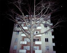 by Jonas Loiske