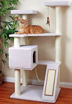 "If I don't use my ""tree house"" concept, I could do something similar to this ""ramp"" with the cat barn to the side like this one.  LOVE this too... just not as ""blending"" into living room space as a tree-looking one would."