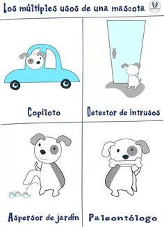Usos de una mascota