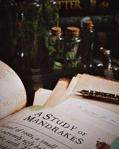 Draco Malfoy Aesthetic, Slytherin Aesthetic, Dark Green Aesthetic, Photocollage, Hogwarts Houses, Mischief Managed, Mood, Prints, Aesthetics