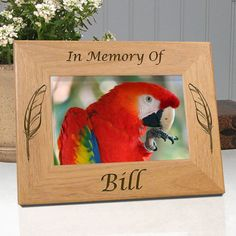 Personalized Bird Memorial Frame In Memory Of | Unique Bird Lover Gift Ideas | EtcheInMyHeart.com