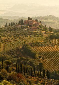 travelingcolors:  Tuscany Landscapes, San Gimignano | Italy (by Светозар Кръстев)