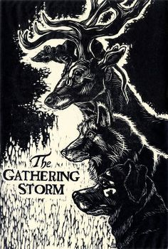The Gathering Storm: A Marauders Fan Film | Indiegogo