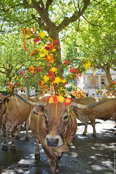 La Fête de l'Estive en Aveyron #TourismeMidiPy #France #Tous_en_aveyron