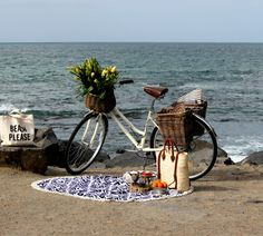 Tamera Beardsley: Bike Picnic