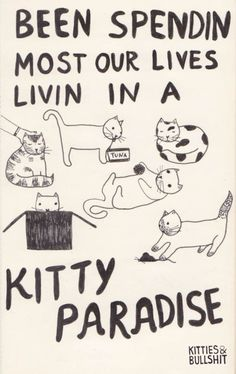 Who doesn't want to live in a kitty paradise?