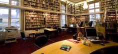 Atardecer de invierno en la biblioteca.