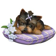 Special Quotes, Cute Baby Animals, Cat Art, Cute Babies, Decoupage, Dog Cat, Lion Sculpture, Teddy Bear, Sleep
