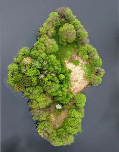 """Top View Of An Lake Island – Poland. At first sight, I almost posted this to my """"Earth's Treasures..."""" boards coz I thought it was a mineral"""