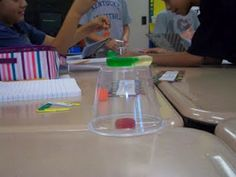 Saving Fred - It is a great partner activity that involves problem solving and creativity. First week of school activity. 4th Grade Classroom, Science Classroom, Teaching Science, Science Activities, Classroom Activities, Classroom Ideas, Teaching Ideas, Science Projects, Science Experiments