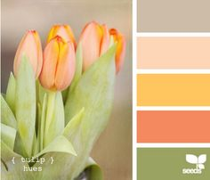 I love this color palette - so fresh.  Now which room ?