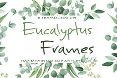 Eucalyptus Frames Clip Arts by DioFlow on @creativemarket