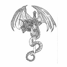 9 Best Winged Dragon Tattoo Drawings Images In 2017 Dragon