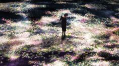 Flowers and People, Cannot be Controlled but Live Together, for Eternity – Tokyo teamLab