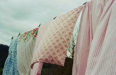 Wind #dailyconceptive #diárioconceptivo