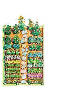 Jamie Oliver's 8'x12' Garden Plan.