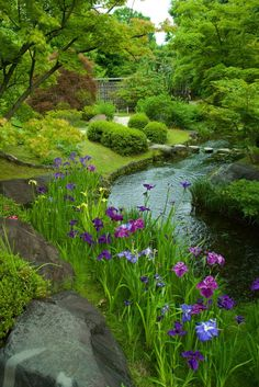 Discover the Garden Path Elements you need to create the perfect Garden Path. From formal to whimsical, get inspired and learn how to recreate garden paths Garden Pond, Water Garden, Garden Paths, Iris Garden, Beautiful Landscapes, Beautiful Gardens, Landscape Design, Garden Design, Landscape Steps