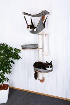 Katzen Wandpark Tiermbel Luxusmbel Katzenmbel In lots of variations Cat Tree Cat Tree For The Wall. Cool Cat Beds, Cool Cats, Cat Wall Furniture, Cat Wall Shelves, Diy Cat Tree, Cat Towers, Cat Playground, Cat Enclosure, Cat Condo