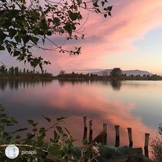 Silence in #Deltadelebre... Picture by @pinapli (Instagram)