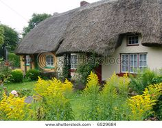 Google Image Result for http://image.shutterstock.com/display_pic_with_logo/50755/50755,1193760802,8/stock-photo-typical-thatched-roof-cottage-in-ireland-6529684.jpg