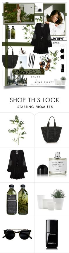 """""""Untitled #70"""" by rennss ❤ liked on Polyvore featuring Pier 1 Imports, Alexander Wang, Rosetta Getty, Young, Fabulous & Broke, Byredo, AMBRE and Chanel"""