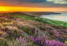 Find inspiration in Yorkshire   Welcome to Yorkshire
