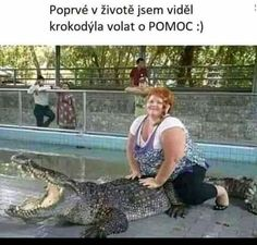 Never seen before: An alligator screaming for help Funny Animal Memes, Funny Animals, Funny Jokes, Hilarious, Funny Stuff, Funny Laugh, Funny Sayings, Lol, Animals