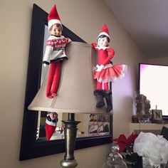 "Elfer, Sprinkle and Ginger ""hanging out"" on the lamp in the living room  https://www.facebook.com/JessLasher/timeline/story?ut=43&wstart=0&wend=1451635199&hash=7421271096930635601&pagefilter=3"