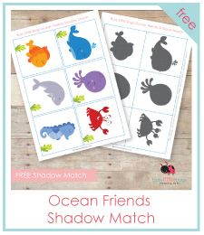 Ocean Friends Shadow Match