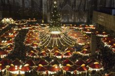 Christmas Market in Cologne, Germany. Cologne Christmas Market, Christmas Markets Germany, German Christmas Markets, Christmas Markets Europe, Rail Europe, Christmas Destinations, Cologne Germany, Fairy Land, Travel With Kids
