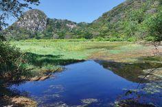 Sector  Catalina, Parque Nacional Palo Verde, Guanacaste, Costa Rica