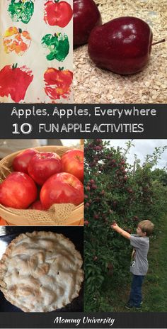 apples apples everywhere 10 fun apple activities perfect fall by Mommy University at www.MommyUniversitynj.com