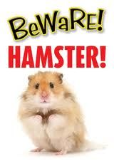 Beware Hamster Gate/Door Signs For The Home Cute Hamsters, Door Signs, Dogs, Hamster Stuff, Animals, Ebay, Teaser, Gate, Animales