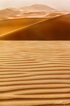 dune by Habib Zadjali Beautiful World, Beautiful Places, Deserts Of The World, Desert Life, The Dunes, Amazing Nature, Beautiful Landscapes, Wonders Of The World, Cool Pictures