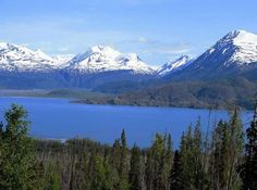 Alaska Fishing Trips - Once-In-A-Lifetime Wildlife Adventures