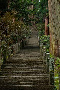 女人高野 室生寺を観光。