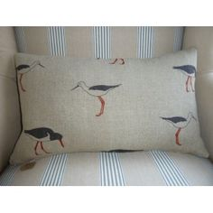 Emily Bond Oyster Catcher Scatter Cushion Emily Bond, Scatter Cushions, Drawing Room, Oysters, Catcher, Bed Pillows, Pillow Cases, Lamps, Living Room