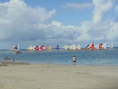 #Beach #PortodeGalinhas #Pernambuco #Brazil