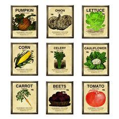 Seed packets http://smallspacebigharvest.files.wordpress.com/2012/01/marisa-lerin-seed-packet-brads-asset-brad-garden-seeds-vegetables-embellishment-comm...