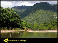 """TURISMO RURAL EN NICARAGUA: RESERVA DE BIÓSFERA BOSAWAS @Nicaraguarural: """"...Como se sabe, BOSAWAS en realidad es una palabra formada por la primera sílaba de los nombres de los principales accidentes geográficos de la Reserva: Río Bocay, Cerro Saslaya y Río Waspuk. Ya es una palabra común entre los nicaragüenses y se pronuncia con acento agudo: Bosawás..."""""""