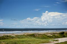 """""""This exquisite barrier island is home to 10 miles of unspoiled fine-sand beach; wild-growing palmetto, oak, and magnolia trees; a veritable Noah's ark's worth of mammals and rare birds; and 1,626 lucky residents. With small-town charms and proximity to the gracious urbanity of Charleston, Kiawah makes the ideal possible: a vacation-like lifestyle with easy access to commerce and culture."""" - Coastal Living magazine, July 2012"""