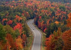 Fotó: Trending on Pinterest: Leaf peeping. Check out the top places in the U.S. people travel to view and photograph fall foliage this autumn. http://pin.it/dTZCDgF