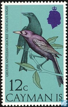 Birds Spirited Sixteen Used 1979 Barbados Stamps Barbados (1966-now) Caribbean