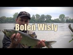 Łowienie boleni. Angielskie napisy   Asp fishing. English subtitles.